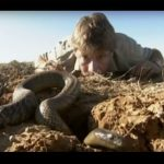 Steve Irwin – Most Deadliest Snakes (part 5)